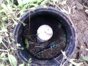 Septic Pressurized Drainfield Flush Port