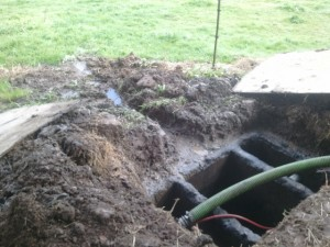 Clogged drainfield competitor failed the system and called the local health department