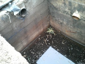 Closeup of leaking cinderblock septic tank